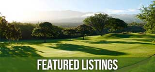 RE/MAX Executive Golf Community Homes